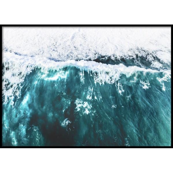 Wild Waves 2.0 Poster