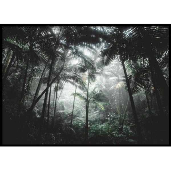 Deep Jungle Poster