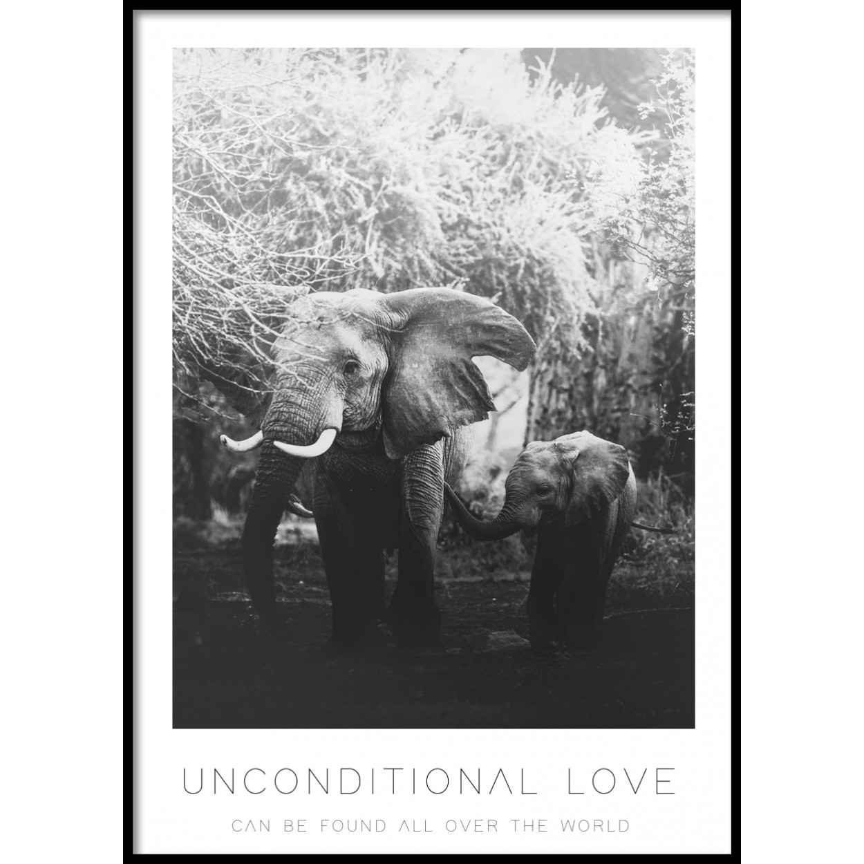 Unconditional Love Poster