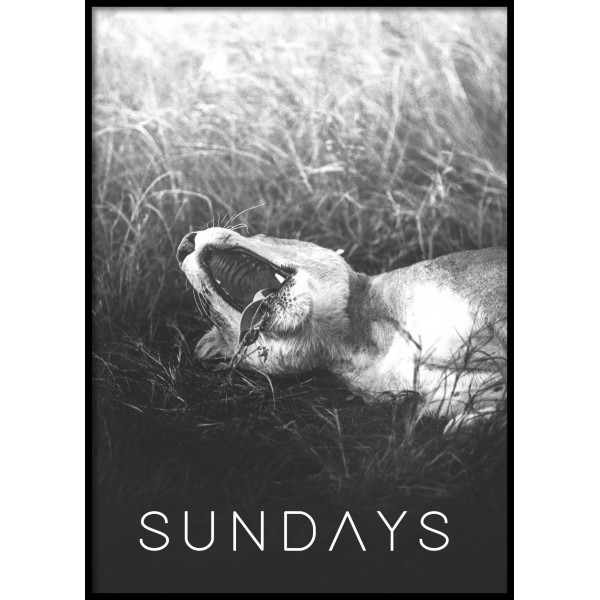Sleepy Sundays Poster